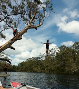Student jumps from tree on Noosa River