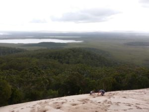 View from the Cooloola Sandpatch