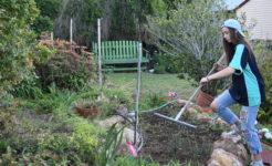 Student helping garden