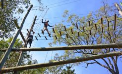 Student ziplining in challenge program