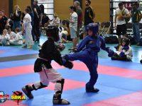 Alfie, martial arts standout