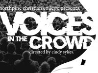 Voices in the Crowd Theatre performance